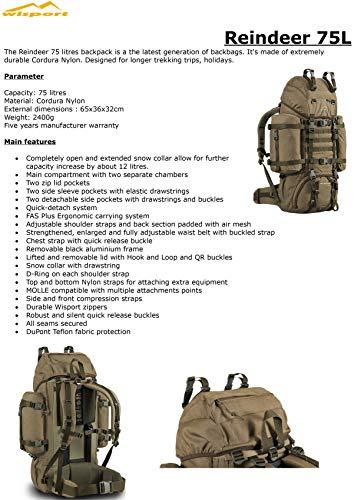 Wisport Bug Out Bag 75L für Damen & Herren + inkl. E-Book | Prepper Rucksack Frauen Männer | BOB Backpack | Go Bag | Fluchtrucksack groß taktisch | Cordura | Reindeer RAL-7013 - 3